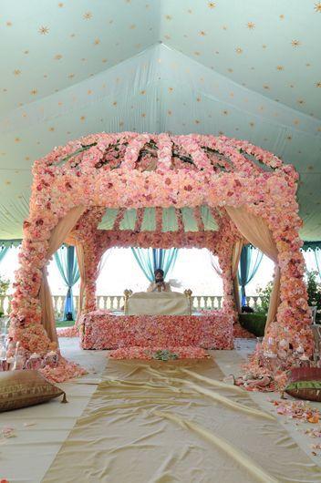 Beautiful #Rose #Palki