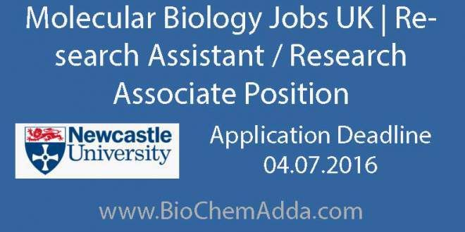 You must have extensive experience in molecular biology techniques including chromatin immunoprecipitation assays, and gene expression analysis by quantitative real-time RT-PCR and in situ hybridisation.