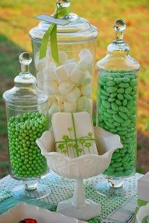 Two Peas in a Pod Theme Decoration Ideas for Twins