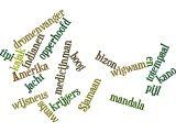 Met Wordle gemaakte spellingsoefening van Roan rond het thema indianen, ZO WORDT ZELFS SPELLEN LEUK. SUPERPAGINA