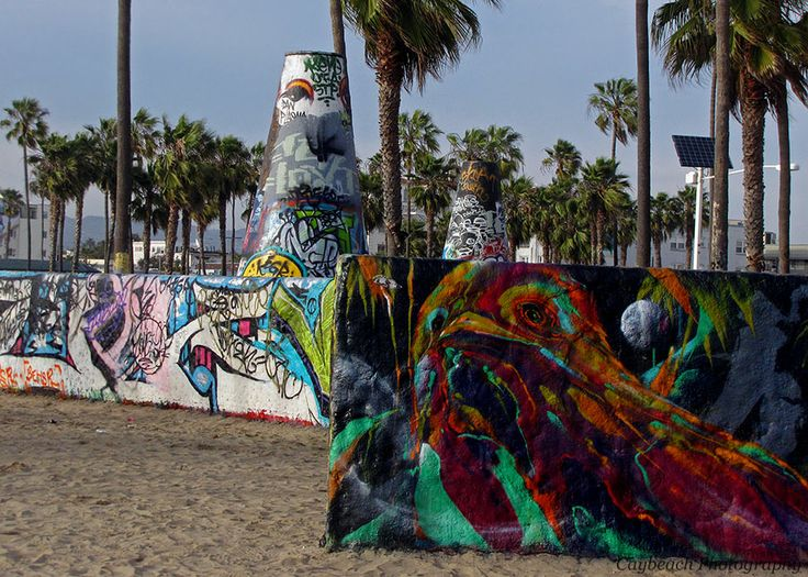 Venice Beach, California. Photo by Caybeach Photography.