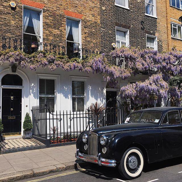 london | wisteria | vintage | black cab | london cab