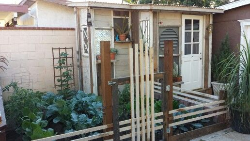 Garden shed made from reclaimed materials and pallets