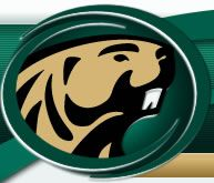 Bemidji Beavers; Bemidji State University; Bemidji, Minnesota