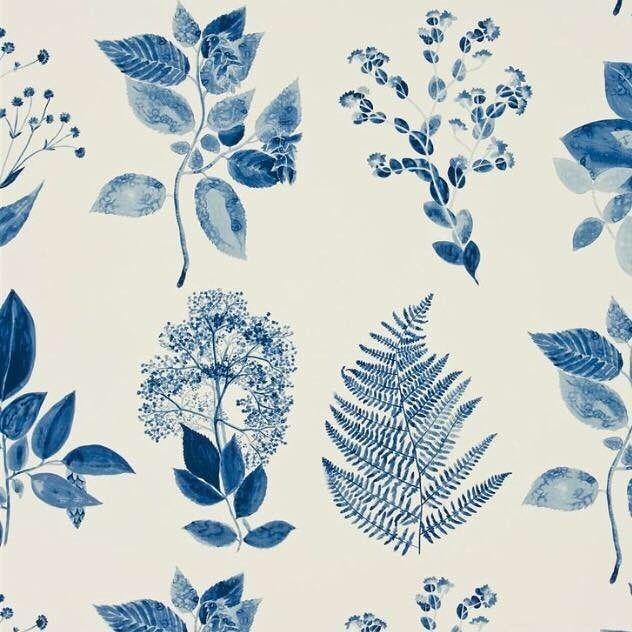 Magnifique plantes imprimée #artnature #beautenaturelle #plantessauvages #lechemindelanature