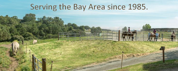 BOK Ranch Therapeutic Horseback Riding - summer camps for special needs in the south bay
