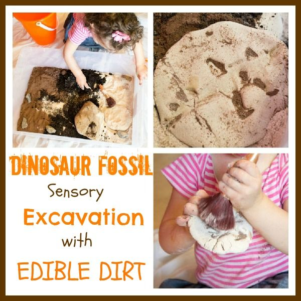 dinosaur excavation