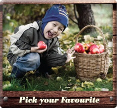 Batlow Apples. The tastiest apples out there. 100% Australian owned and grown.