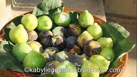 Figues en Kabylie
