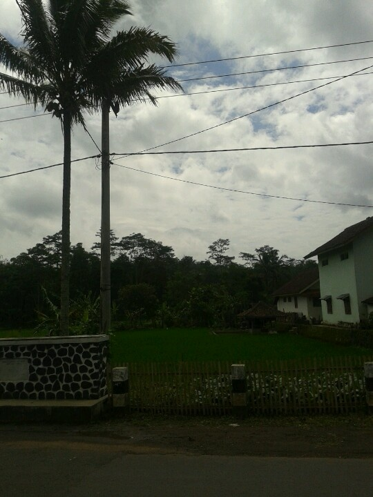 Alam pedesaan :-)