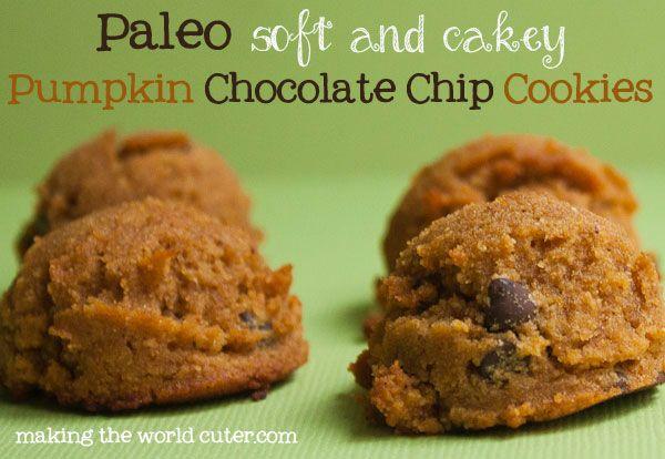 Paleo (soft and cakey) pumpkin chocolate chip cookies.