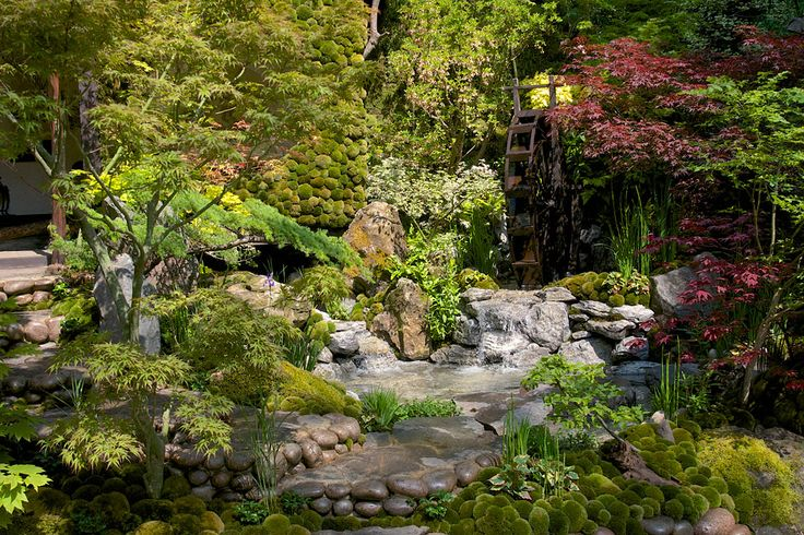 Togenkyo – A Paradise on Earth artisan garden at the RHS Chelsea Flower Show 2014 / RHS Gardening
