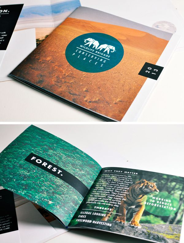 Best Brochure Design  Layout Images On   Brochure