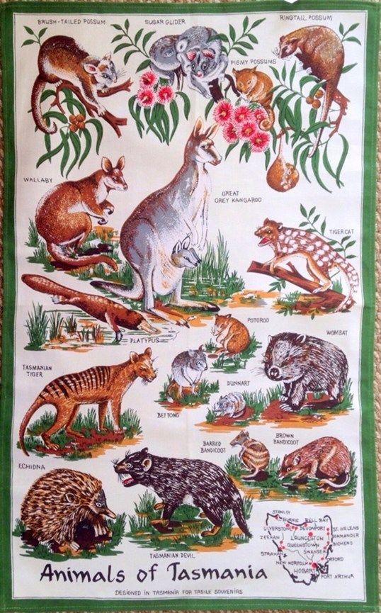 Animals of Tasmania Tea Towel