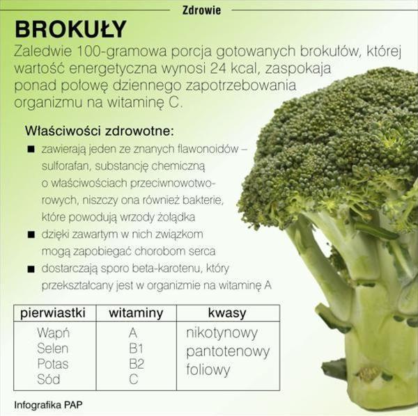 MTAyNHg3Njg,brokuły-infografika.jpg (600×598)
