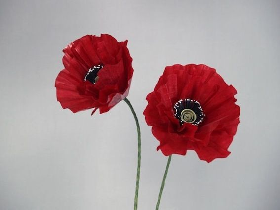 How to: Make Perfect Paper Poppies