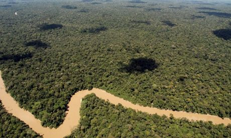 Ecuador signs permits for oil drilling in Amazon's Yasuni national park