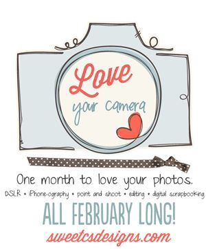 Love Your Camera Series at SweetCsDesigns.  Sign up for the email list so you won't miss a single lesson/tutorial!