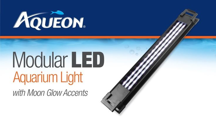Aqueon Modular Led Aquarium Light Fixtures