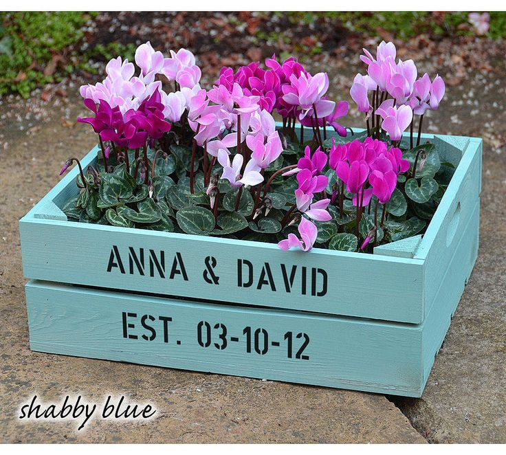 Personalised Medium Crate With Cyclamen Bulbs