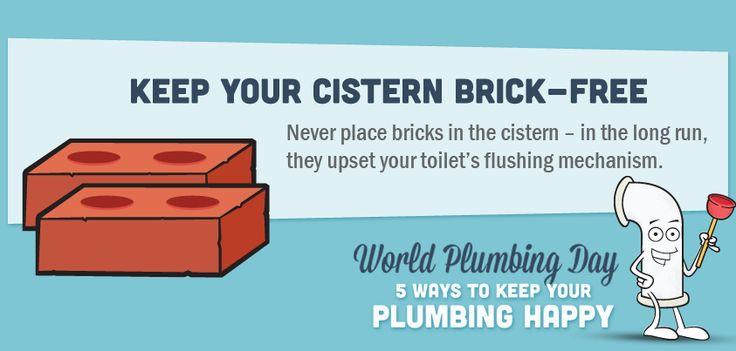 Keep your cistern brick-free #plumbing #tips #tricks #toilet #brick #ideas #information #helpful #Home #DIY #information #graphic