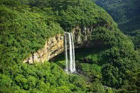 Pantanal Mato Grosso do Sul