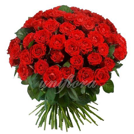 Удивляйте и побеждайте!  http://uniflora.com.ua/bouquet/buket-iz-101-krasnoj-rozy-red-naomi-import.html
