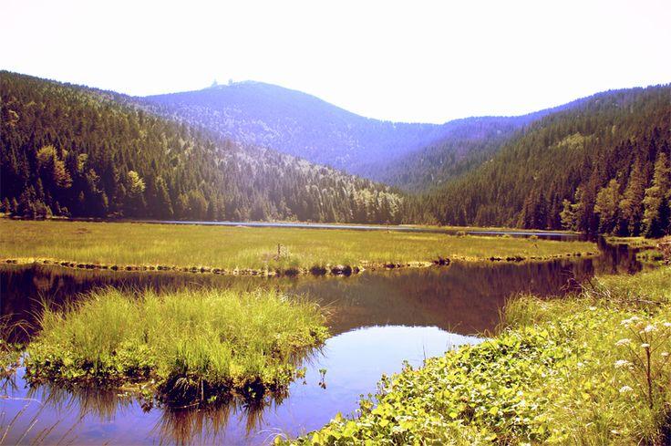 KleineAbersee - Šumava - Böhmerwald - Deutschland