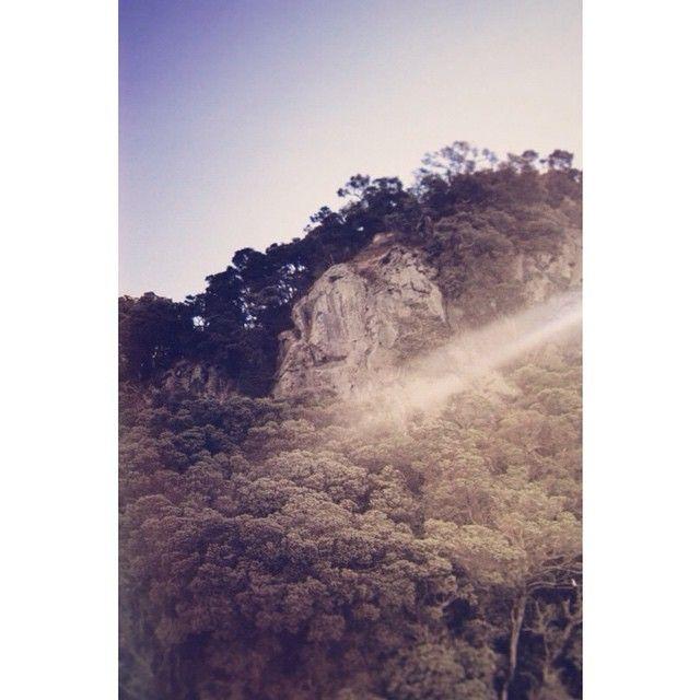 """Sun struck. #Taupo #sun #sunny #sunrays #island #instanz #instagood #instadaily #landscape #light #letsgosomewhere #landscape_captures #landscape_perfection #photooftheday #neverstopexploring #exposure #exploreeverything #agameoftones #ArtofVisuals"" Photo taken by @sophie_hamer on Instagram, pinned via the InstaPin iOS App! http://www.instapinapp.com (02/25/2015)"