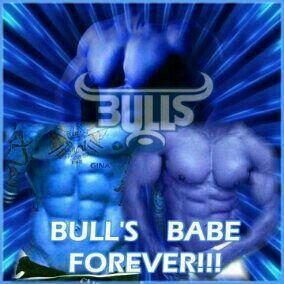 Blue Bulls torsos