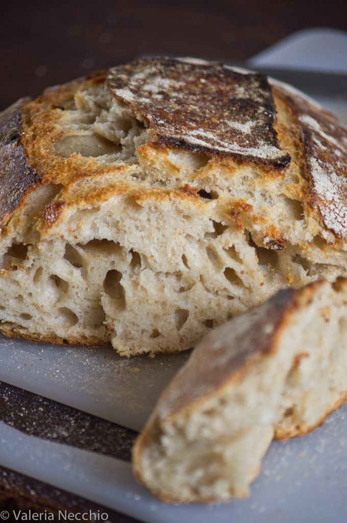 "Tartine Bread: basic country loaf || pagnotta ""base"" con lievito naturale"