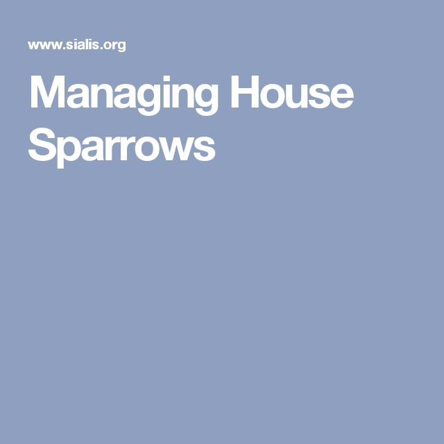 Managing House Sparrows
