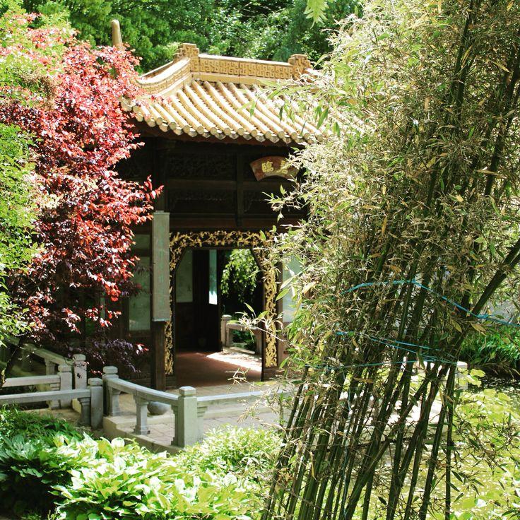 #chinesegarten #westpark #münchen