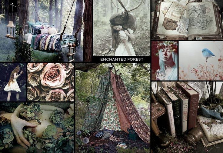 For the new 'Enchanted Forest' design challenge we want you to create a beautiful,...