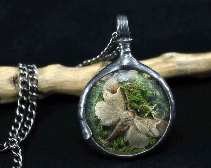 moth & moss necklace, night butterfly, real insect, terrarium necklace, handmade by pentaxPL on Etsy