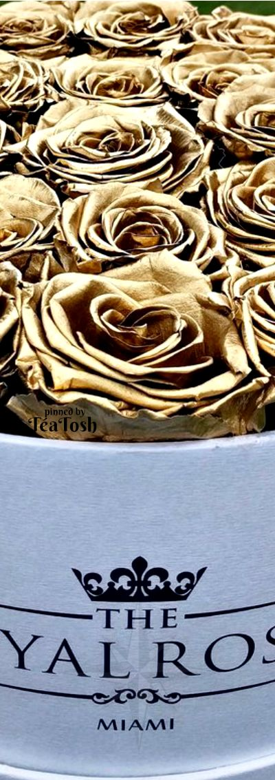 ❇Téa Tosh❇ Royal Roses… Golden Eternity Roses