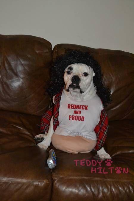 373 Best Redneck Images On Pinterest Funny Images