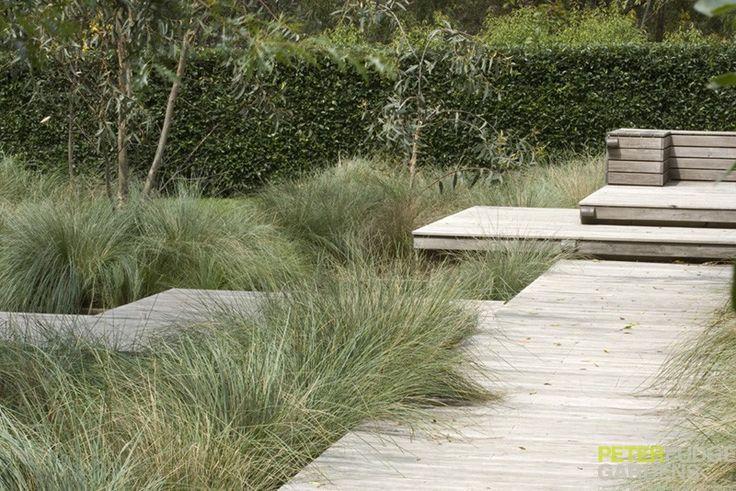 Country Beauty - Peter Fudge Gardens