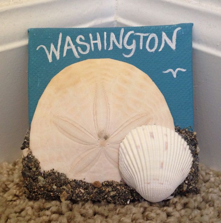 Washington beach magnet
