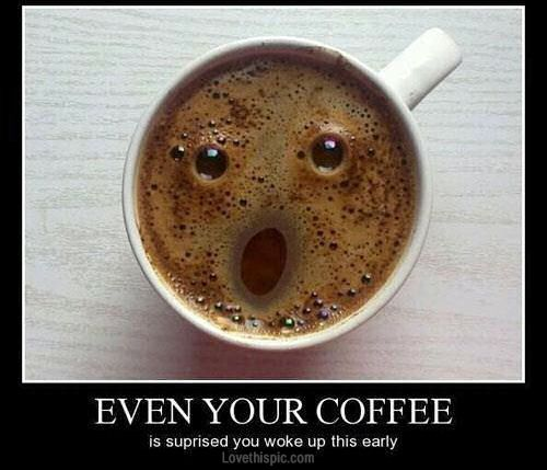 funny coffee funny quotes coffee lol humor
