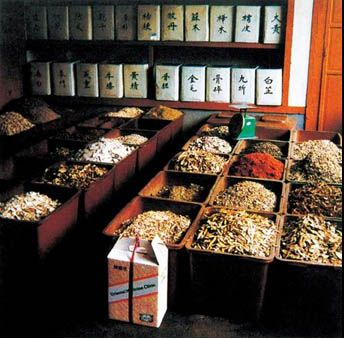 traditional chinese medicine's competency in the Cultural competency is an essential skill for family physicians because of increasing ethnic diversity among patient populations  traditional chinese medicine remains popular chinese medicine .