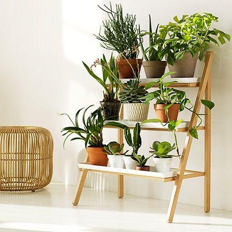 Pot Ladder by Linda Bergroth For Kekkil | MONOQI