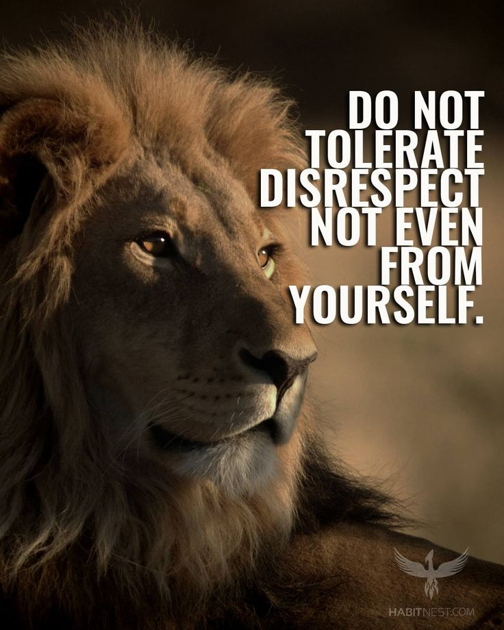 Motivational Quotes With Lion Images: Do Not Tolerate Disrespect Not Even From Yourself