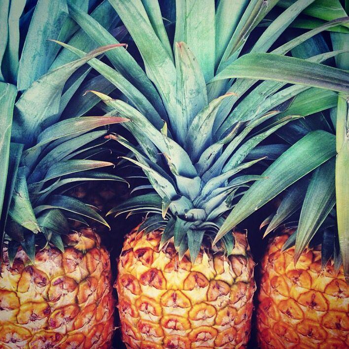 Working on our organic pineapple crush!  Loving pineapples! #organic #pineapples #certified #canterandcolt #canteron #brisbane