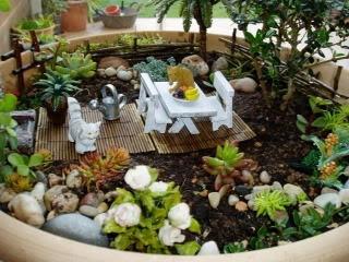 mi jardin en miniatura