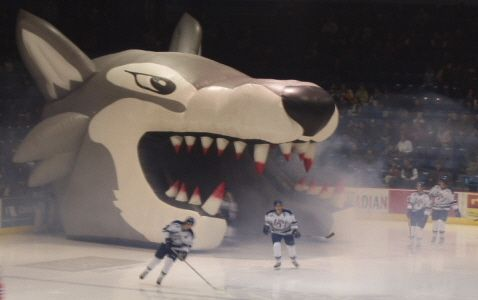 Sudbury wolves hockey team