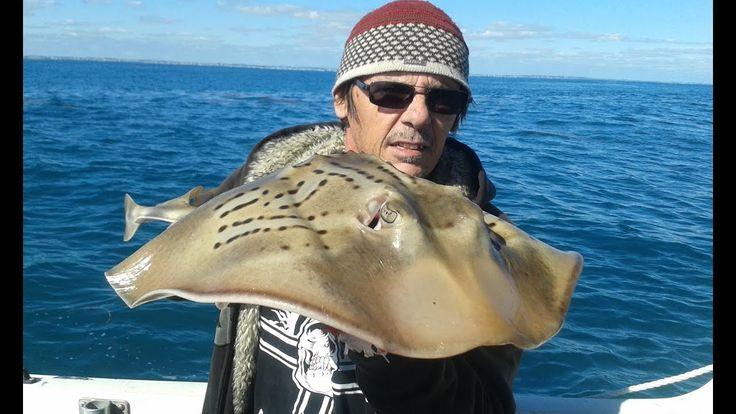 Fiddler Ray #fishing