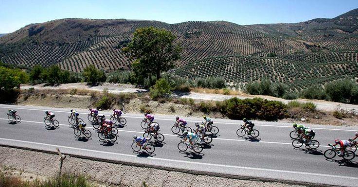 La Marina Alta vuelve a ser escenario de la Vuelta Ciclista a España en 2016 y en Bellavista Residential puedes alojarte y vivir con gran intensidad estas fabulosas etapas.