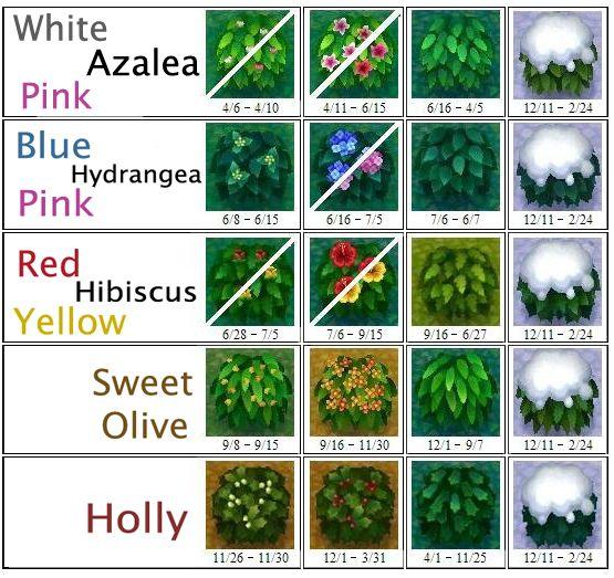 AC: New Leaf Bush Chart