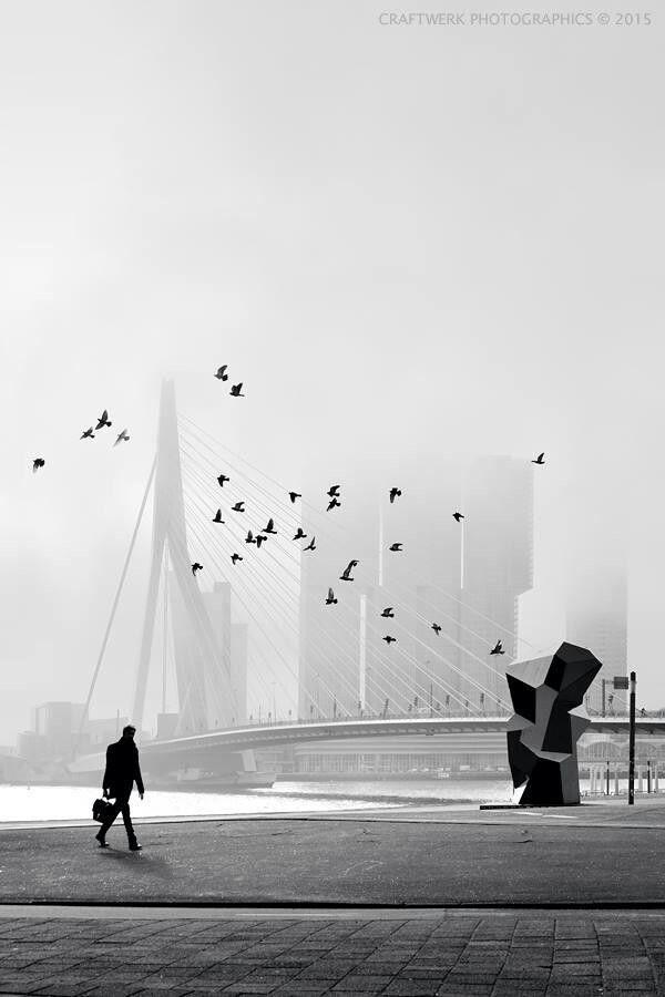 Rotterdam Erasmusbrug by gersmagazine